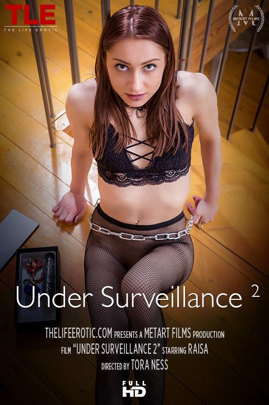Under Surveillance 2